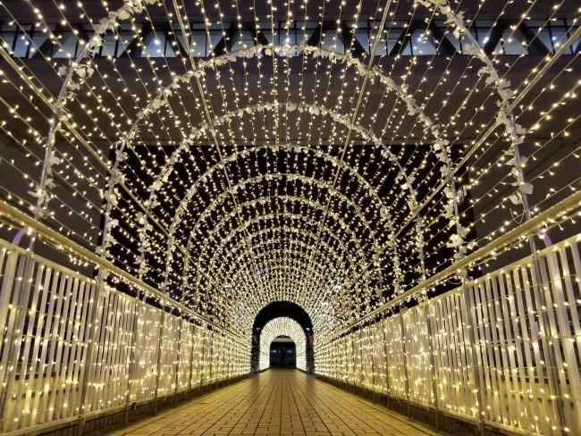 光のトンネル2020