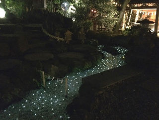 氷川神社 星空水中照明