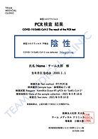 チームメディカルクリニック PCR検査 検査結果PDF
