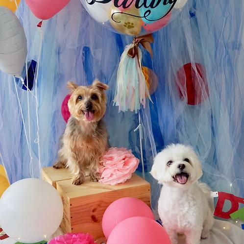 Personalised  Balloon Celebration Bouquet