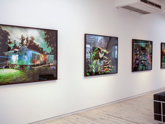 Michael Hoppen Gallery, London 2011