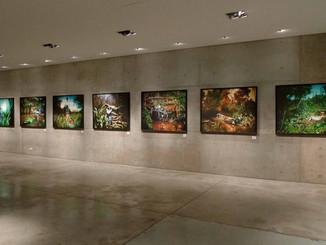 Museo Emilio Caraffa, Cordoba 2009