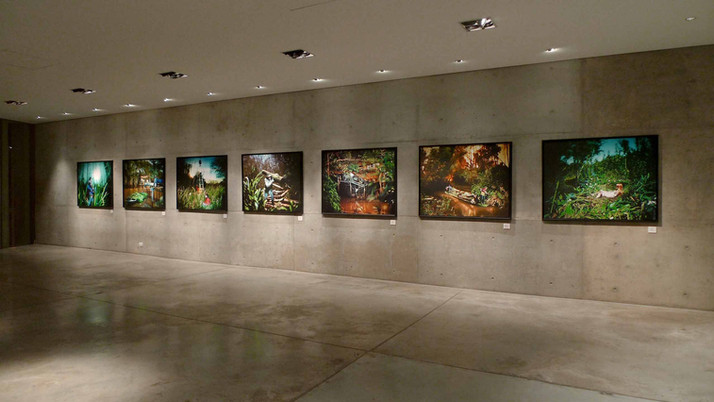 Museo Emilio Caraffa, Cordoba, Argentina 2009