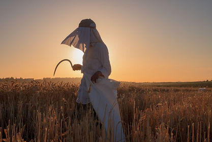 TIFA 2019- people - wheat harvest honora