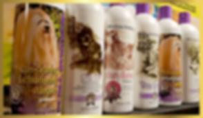 shampoo-01.png