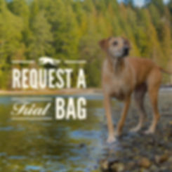 requesta trial bag dog-02.jpg