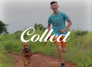 Collect-05.jpg