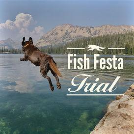 fish festa trial cover-01.jpg