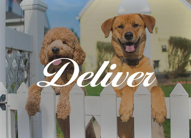deliver-06.jpg
