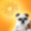 sunpetgamart-01.png