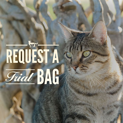 request trial bag Cat-03.jpg
