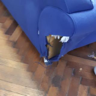 Canapea înainte de recondiţionare