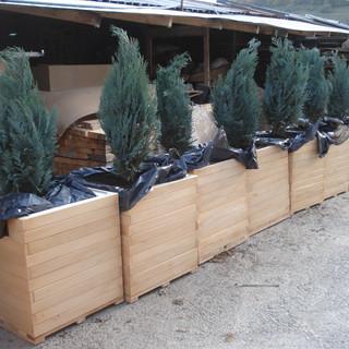 Ghiveci lemn exterior