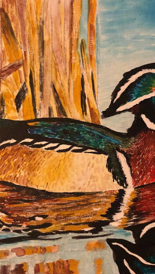 Griggs, Margie - Wood Duck - Acrylic and Gouache - 8 Inches x 10 Inches - $150.jpg