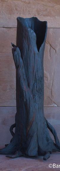 Barbara Ellard