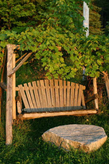 A beautiful wooden swing with grape vines growing over provides a place for solitude and reflection