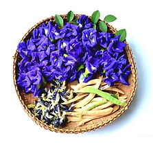 butterfly_pea_flowers_dried_sm_1024x1024