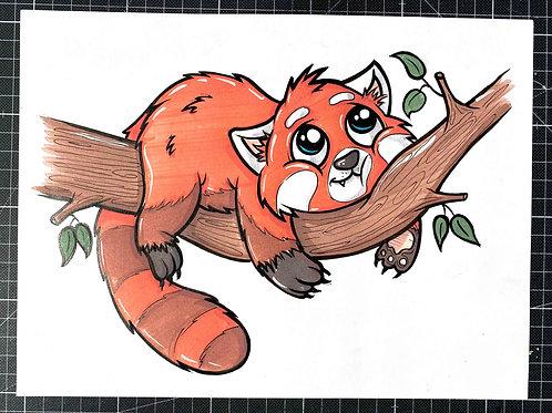 Roter Panda - Original Zeichnung - adrian.double.u