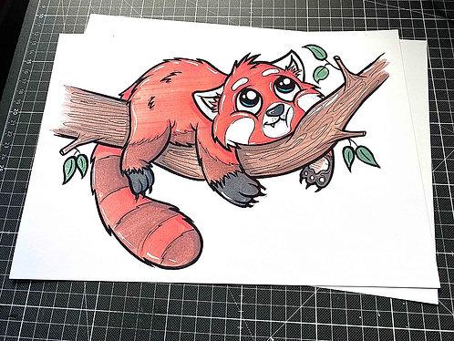 Roter Panda - 2.Auflage Print - adrian.double.u