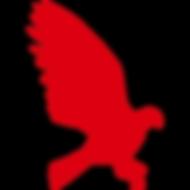 Hawk Media
