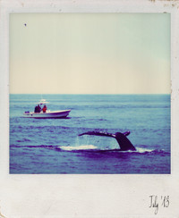 Bucket List Polaroid 8