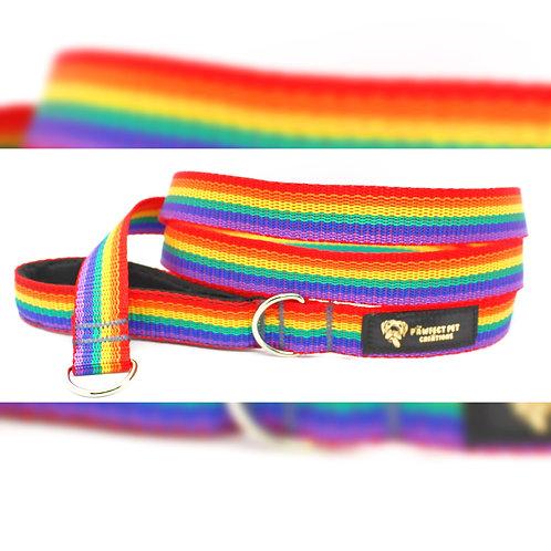 Rainbow Slip Lead