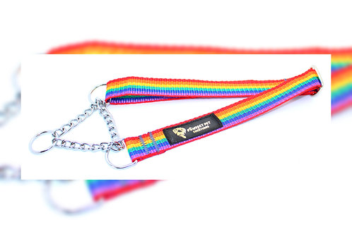 25mmRainbow Martingale Collar