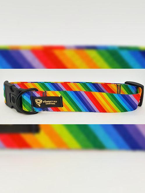 Rainbow 38mm Dog Collar