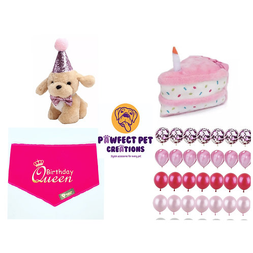 Girls Birthday Pawty Pack