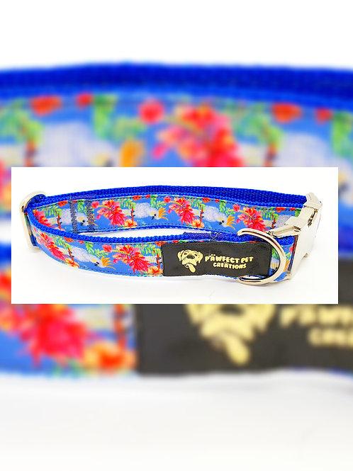 Cockatoo 25mm Collar
