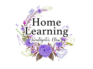 Investigator Class - Home Learning Plan  Week 3: Friday 22nd January