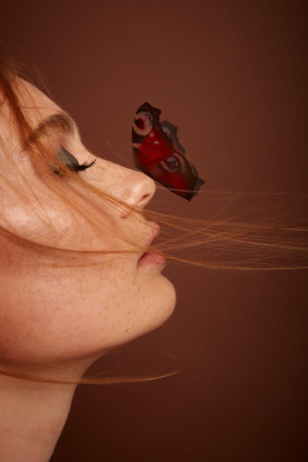 181001_Butterfly_Test_1280.jpg