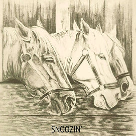Pleasant drawing of three horses snoozin' by artist BETS