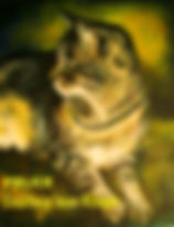 Feline Acrylic painting by artist BETS