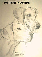 delicate drawing of two hounds by artist BETS Klieger