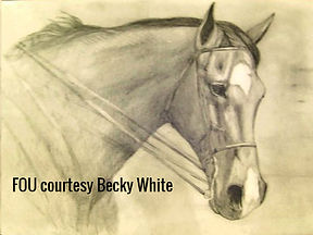 artist BETS Klieger captures horse in a drawing
