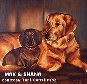 Painting of two dogs by artist BETS