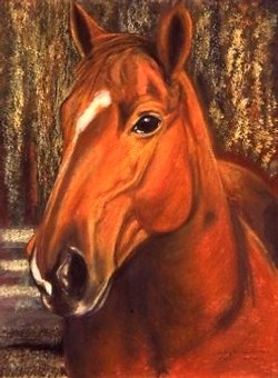 BIG CHESTNUT MARE