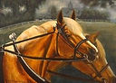 Horse Painting Acrylic by artist BETS Klieger