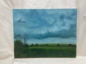 Cloudy Field.jpeg