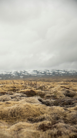 ICELAND_40.jpg
