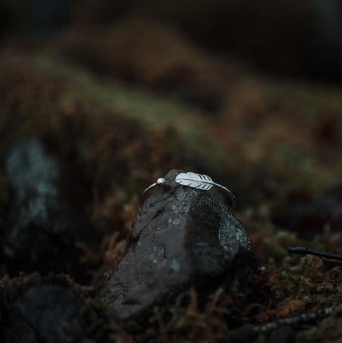 Carter Hill (Forest)-5.jpg