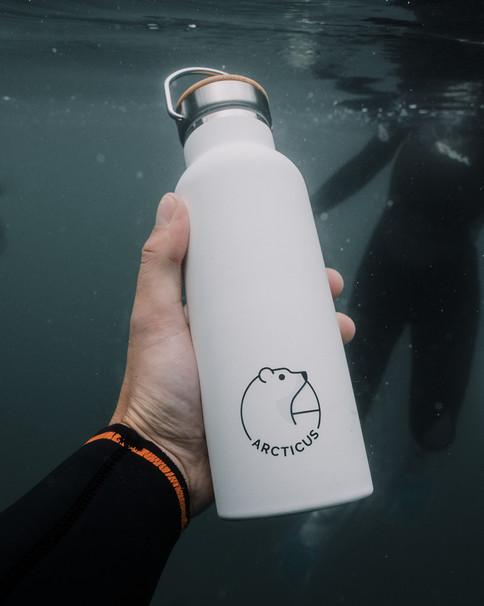 Arcticus Underwater 2.jpg