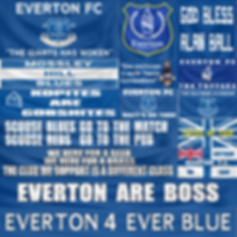 banner_FC Everton_color.png