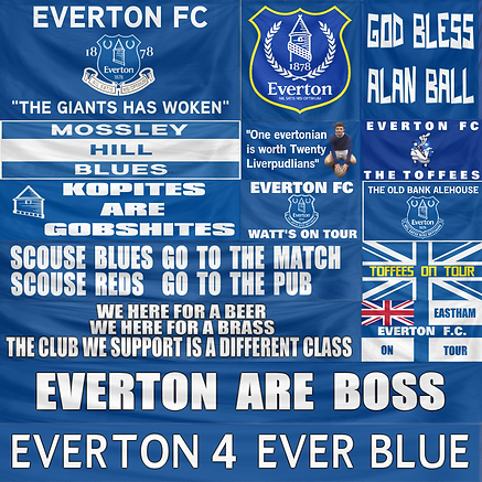 banner_FC Everton_color.png