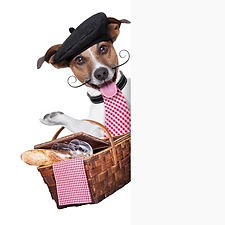FRENCH DOG.jpg