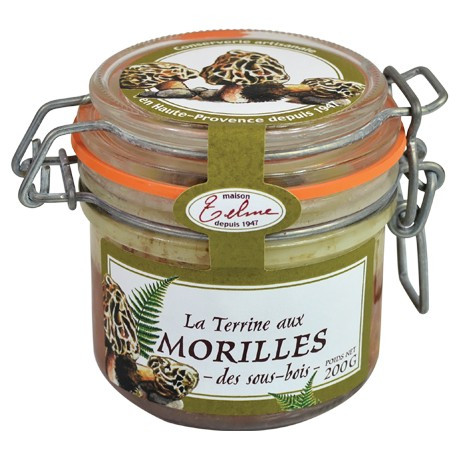 Terrrine aux Morilles