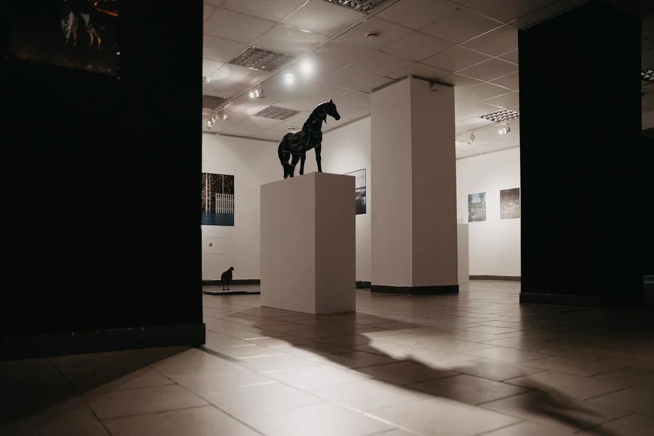 Общий вид экспозиции