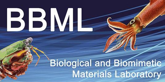 BBML.jpg
