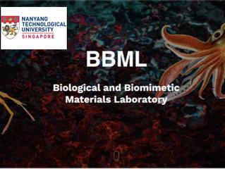 Biomimetics & Biomaterials Research, Nanyang Technological University